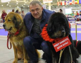 Евро Дог Шоу в Украине: 27 лет пути к победе