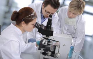 Ученые не исключают, что скоро люди будут размножаться не совсем стандартным способом