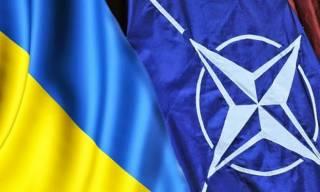 В НАТО обнародовали видео об Украине, начинающееся с митинга Партии регионов. Осознав ошибку, в альянсе извинились