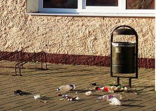 Нардепы предлагают ввести штрафы за выбрасывание мусора в неположенных местах
