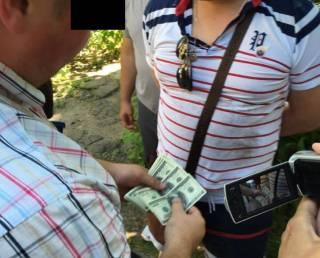 На Днепропетровщине за «волосатую лапу» схватили контрразведчика СБУ, который крышевал порнобизнес