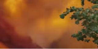 Францию охватили лесные пожары. Эвакуированы 10 тысяч человек