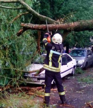 Во время вчерашнего ливня в Киеве, упавшее дерево разбило сразу три автомобиля