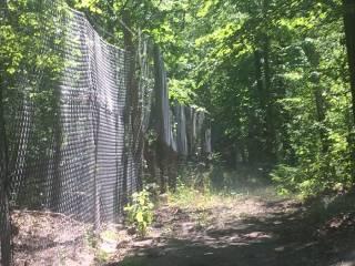 Под Киевом 400 га заповедника отгородили забором с колючей проволокой. Говорят, радикалы постарались