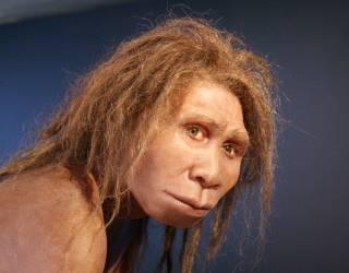 Ученые допускают, что человеческая раса появилась на Земле по чистой случайности