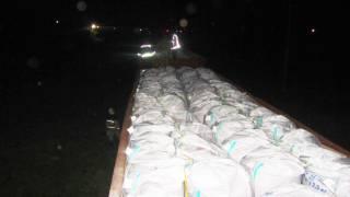 Под Киевом прямо на ходу загорелись грузовые вагоны с удобрениями