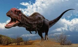 Палеонтологи разгадали тайну гибели мадагаскарских динозавров