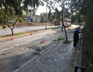 В турецком Измире прогремел взрыв в автобусе