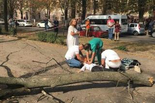 Из-за сильного ветра по всей Украине на людей и машины падают деревья