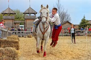 На этих выходных под Киевом будут соревноваться конные каскадеры