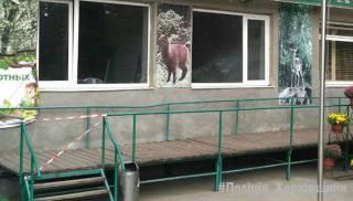 В Харькове обезьяны жестоко поиздевались над работником зоопарка, пытавшимся их покормить