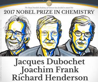 Лауреатами Нобелевской премии по химии стали создатели способа базового понимания химии жизни