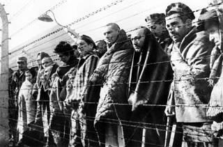 ООО «Освенцим-Украина». Как страну превращают в частный концлагерь