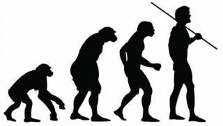 Американские ученые с помощью бактерий кишечной палочки доказали, что эволюция человечества продолжается