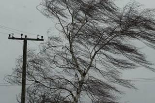 Непогода погрузила во мрак 94 населенных пункта Украины. Сегодня ожидается что-то похожее