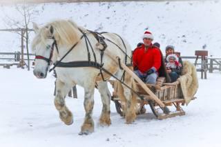 Под Киевом встретят зиму древними обрядами, бегом по «серпантину» и танцевальными флэш-мобами