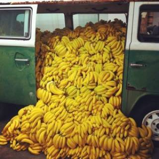 Бананы напичканы пестицидами и заражены грибком, - ООН