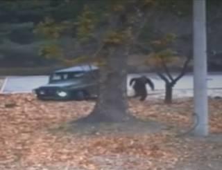 В Сети появилось видео невероятного побега северокорейского солдата в Южную Корею