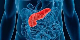 ТОП-10 продуктов для нормализации работы поджелудочной железы