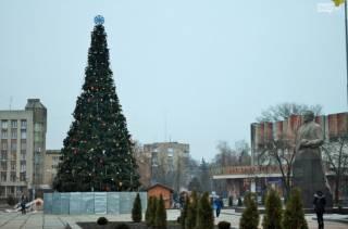 От самых дорогих до самых уродливых: обзор новогодних елок Украины