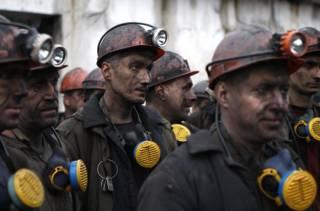 Главный борец против Роттердам+ назвал украинский уголь г**ном