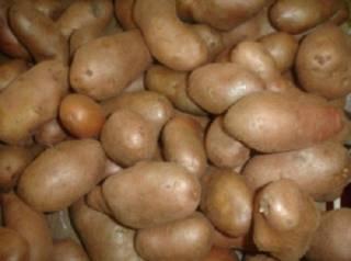 Мешок картошки, собранный школьниками с Ровенщины для воинов АТО, случайно оказался в киевском ресторане