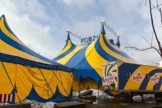 В Киеве запрещена работа цирка «Кобзов» из-за вспышки кори