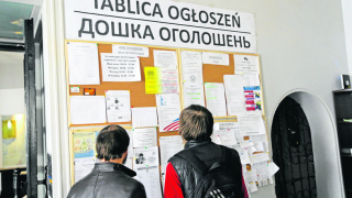 В Польше начался ажиотаж из-за заробитчан из Украины