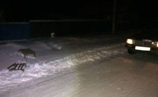 На Одесщине две девушки, катаясь на санях, привязанных к автомобилю, влетели во встречное авто