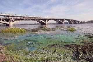 Днепр все увереннее превращается в болото. Украина может остаться без питьевой воды