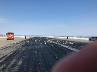 В России из самолета выпали 9 тонн золота