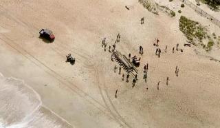 Во Флориде на берег вынесло обломки старинного корабля