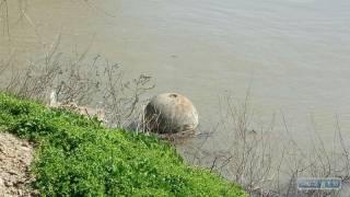 На Одесщине обезвредили громадную мину вековой давности