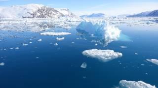 Арктические льды не перестают удивлять ученых