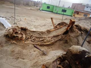 В Перу обнаружено крупнейшее место жертвоприношения детей