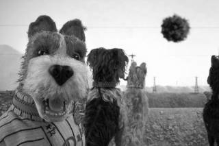 Мультфильм «Остров собак»: человечность на свалке