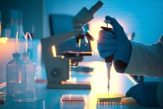 Ученые пугают человечество эпидемией неизлечимого грибка