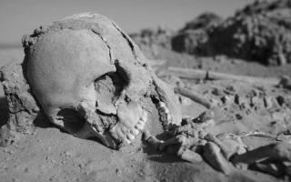 Вымираем, выезжаем, исчезаем… Демографическая катастрофа в Украине