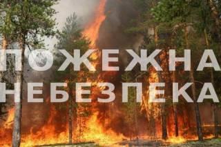 Спасатели предупредили о чрезвычайно высокой угрозе пожаров
