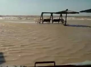 На Азовском море затопило поселок Кирилловка. Людей эвакуируют с острова Бирючий