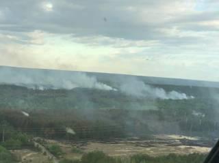 Пожар в зоне ЧАЭС мог стать следствием поджога – спасатели нашли на месте возгорания факелы