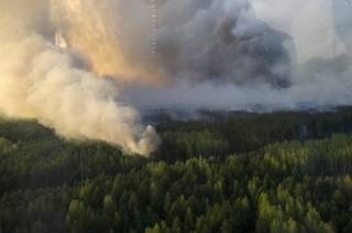 Рыжий лес в зоне ЧАЭС тушат уже третьи сутки