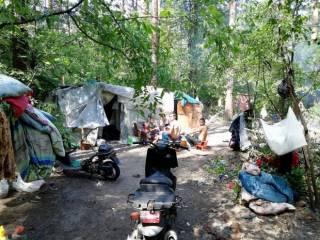 Напав на охрану, цыгане начали захватывать Голосеевский парк в Киеве