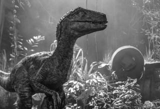Фильм «Мир Юрского периода 2»: новый взгляд на культовое приключение