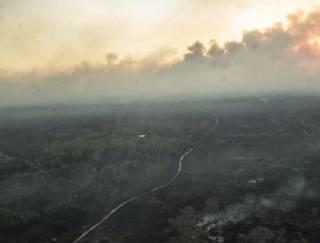 В зоне ЧАЭС снова пылает огонь