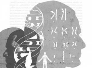 Новинки научной литературы: штрих-код человека, утиный секс и физика в буддистском храме