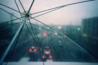 В Украине ожидается неделя дождей