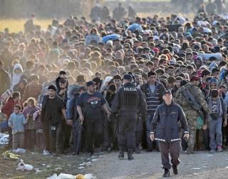 Волна прибывающих в ЕС нелегальных мигрантов значительно сократилась в этом году