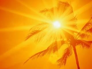 Ученые выяснили, что жара толкает американцев и мексиканцев на самоубийства