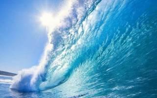 Исследователи заявили о максимальном уровне угрозы для мировых океанов